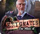 Enigmatis: The Mists of Ravenwood spil