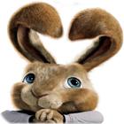 Hop: Easter Bunny Coloring spil